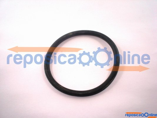 Oring Do Difusor Diametro 74 X 5.3 | Zb-80 Lifan - 00028503.3 - Garthen  - 00028503.3